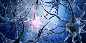 alzheimers disease AC Immune Eli Lilly