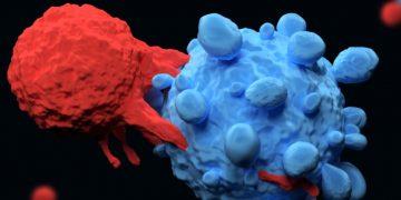 Immunocore TCR uveal melanoma