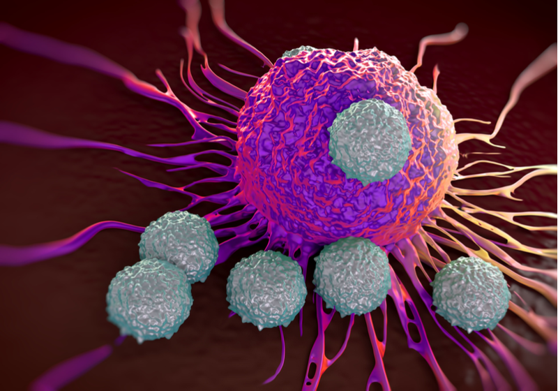 French Biotech Wins 2M€ Seed Money to Bring Cancer Immunotherapy to Clinic