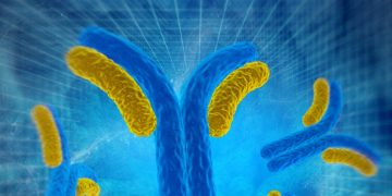 Largest European Series B Financing of 2018 Supports Antibody Cancer Therapy