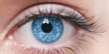 French Fundraising Brings Bionic Vision Closer to the European Market