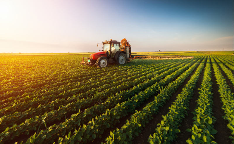This Device Protects Cereals by Diagnosing Herbicide Resistance in Weeds