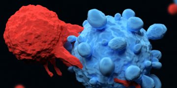Cellectis May Have Found a Way to Make CAR-T Safer