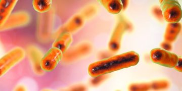 Microbiotica Enters $534M Deal To Develop Microbiome Treatments for IBD