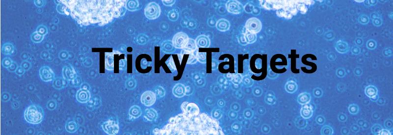 Tricky Targets - glioblastoma cells - ASCO 2018