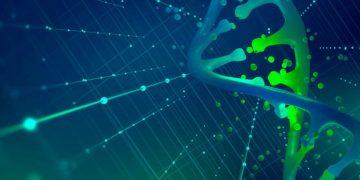 CRISPR-Cas9 DNA Damage