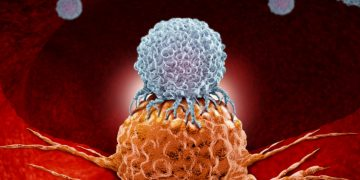 Collaboration Worth up to €1.5Bn Could Give Rise to New Cancer Immunotherapies