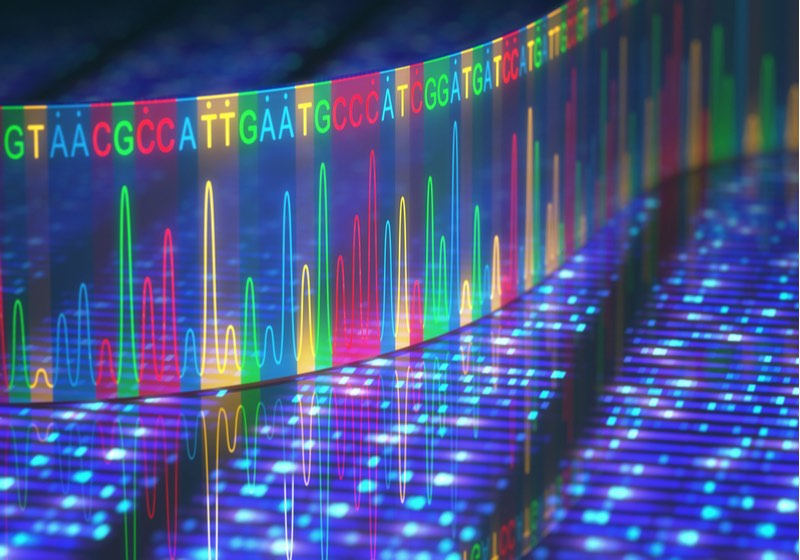 Genome sequencing image