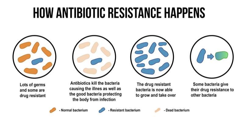 Antabio Raises €12.5M to Fight Antiobiotic Resistance