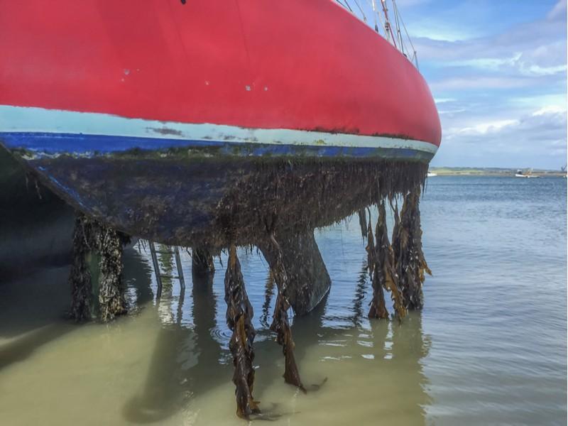 BioMimetx biodegradable biocide boat rudder