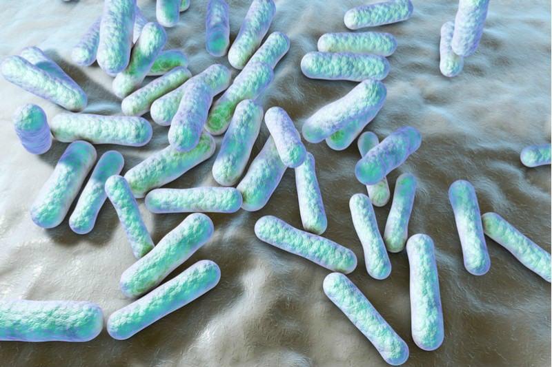Hangout - Propionibacterium acnes skin microbiome