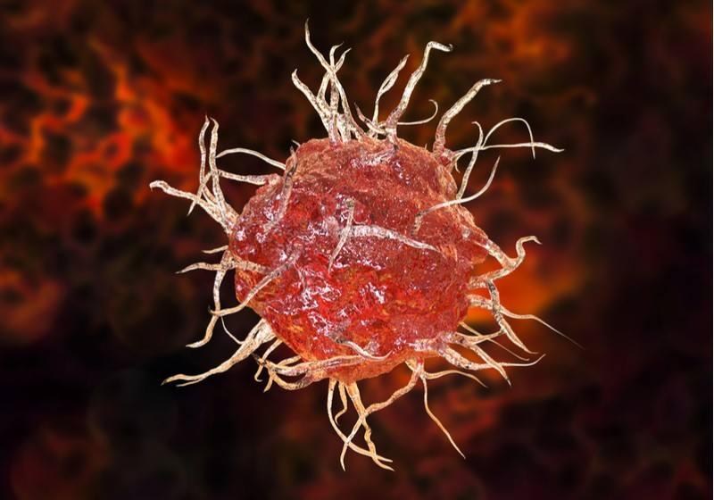 dendritic cell ermium therapeutics autoimmune disease