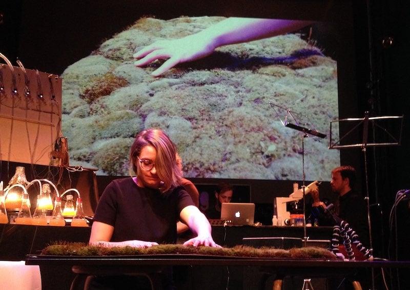 Living Instruments mossphone