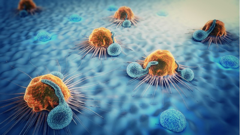 White blood cells attack cancer cells Nobel Prize Winners - Edited