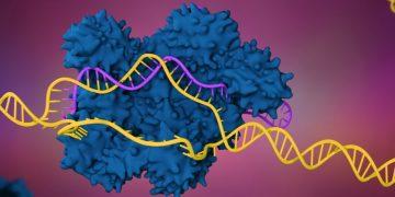 crispr ers genomics enzyme industrial
