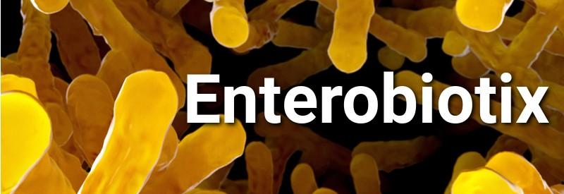 Microbiome biotechs in scotland enterobiotix
