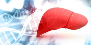 autoimmune liver disease Genkyotex organ thumbnail