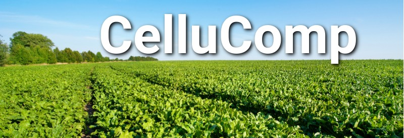 cellucomp sugar beet curran scotland biotech