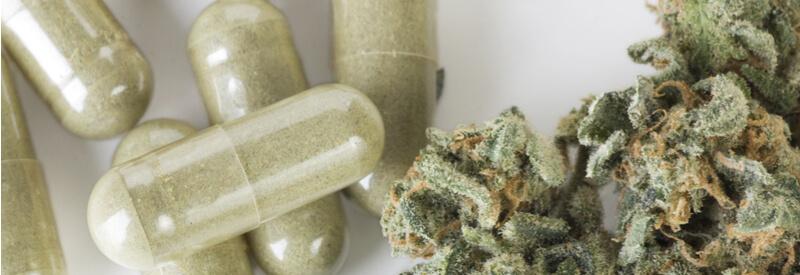 medical cannabis, legalization of medical cannabis, Dentons