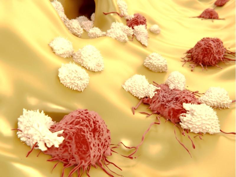 philogen cancer immunotherapy