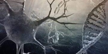 Huntington's epigenetics oxford biodynamics