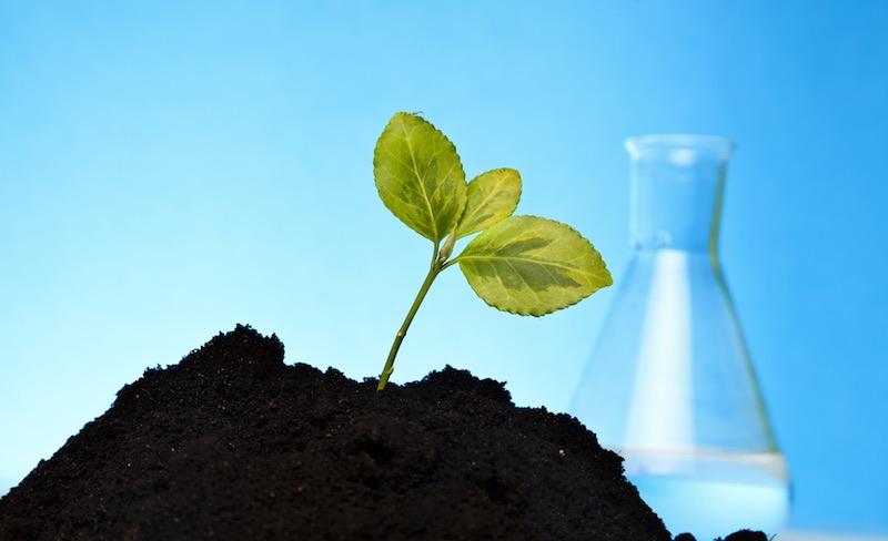 industrial biotech bioeconomy