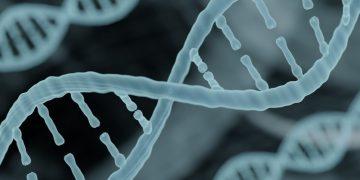 orphazyme rare disease lysosome DNA