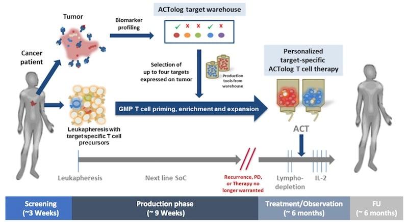 Immatics personalized cancer treatment