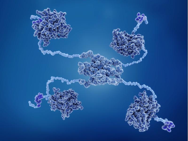 aprea therapeutics cancer drug