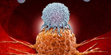 personalized immunotherapy cancer