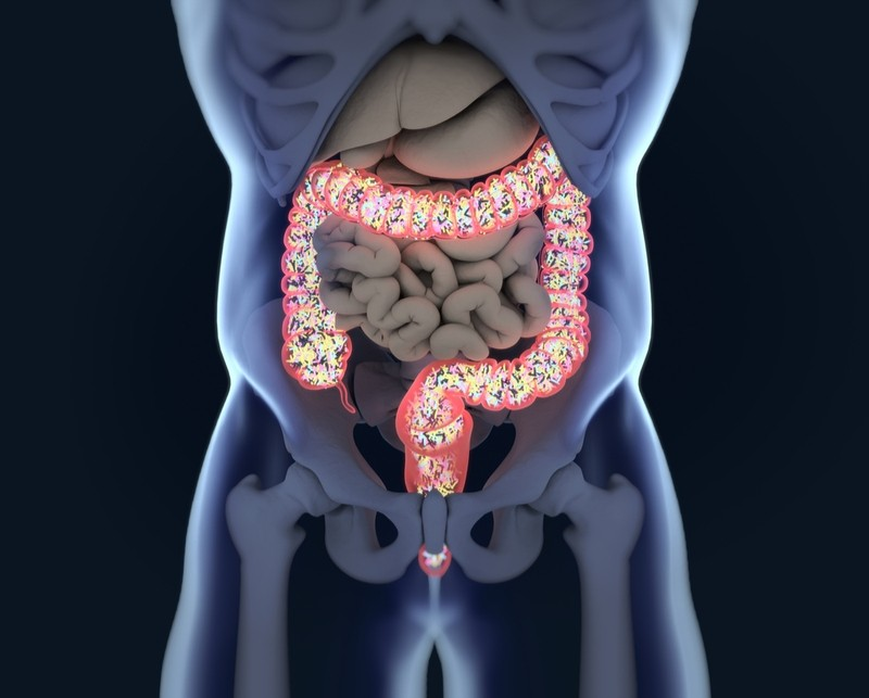 PharmaBiome microbiome ulcerative colitis gut