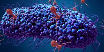 CRISPR-Cas9 bacteriophage anti-CRISPR gut microbiome (1)