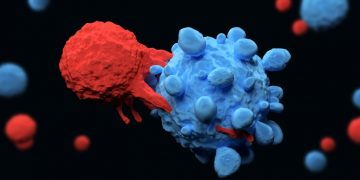 Cell medica car-t cell therapy cancer therapy