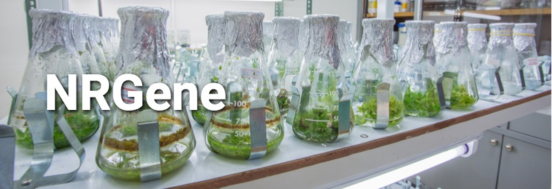 Genomics Companies - NRGene