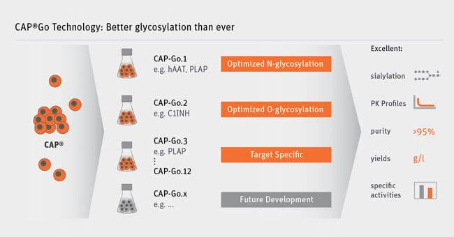 cell lines, cell line development, Cevec, glycosylation, vaccines, gene therapy vectors, CAP-Go