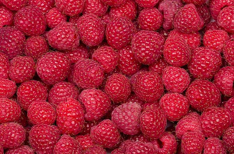 natural flavors biotech industry raspberry