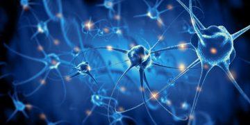 novago stroke ishemic regenerate
