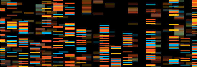 Genotyping, outsourcing genotyping, automatic genotyping, laboratory, genomic data, Transnetyx