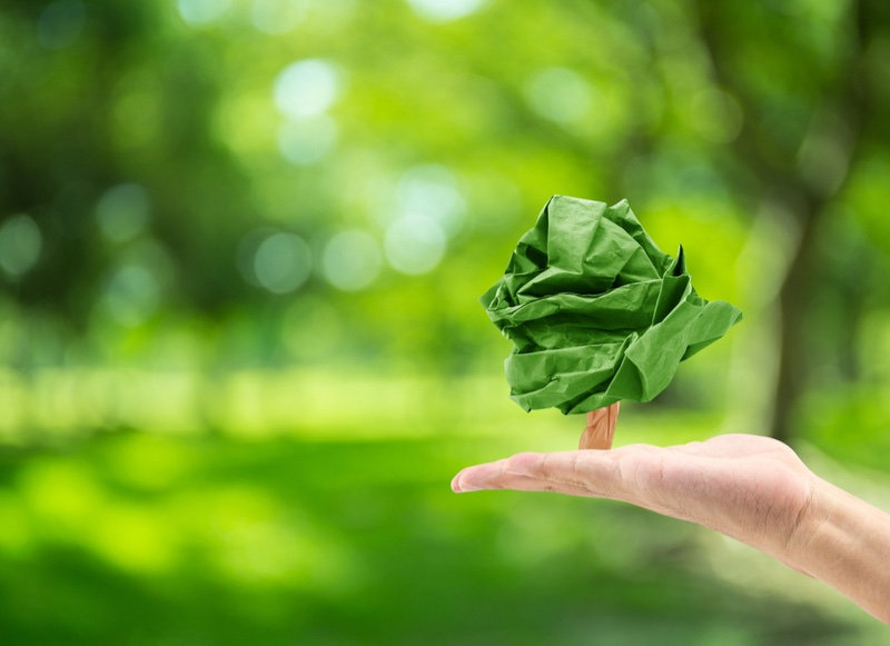 episome biotech paper waste recycling