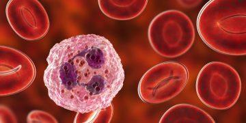 meningitis antibiotic resistance lund university