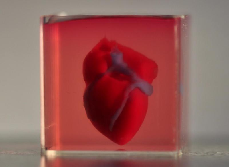 tissue 3d printing heart advanced science