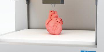 tissue 3d printing heart israel