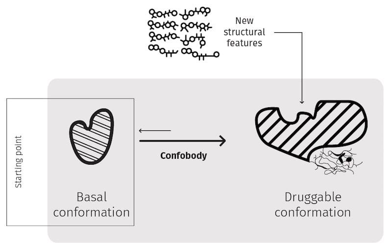 Confo Therapeutics GPCR drug discovery