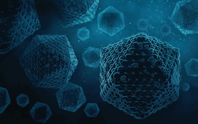 Virus article - Adeno-associated viral vectors