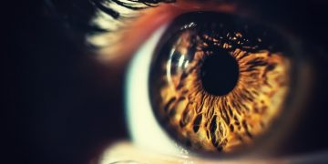 gensight gene therapy lhon genetic blindness