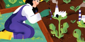 bioeconomy bio-based europe
