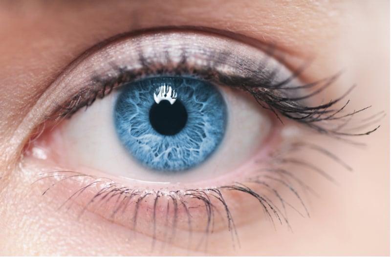corneat vision cornea transplant