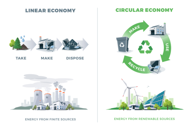 sustainability bioeconomy bio-based circular economy