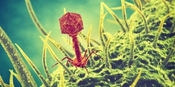 bayer bacteriophage ecophage agriculture