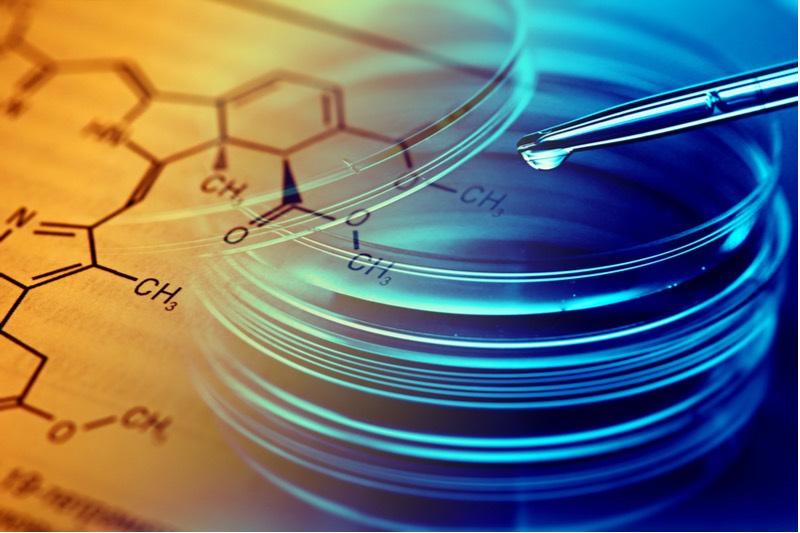 graphene bacteria rochester delft university netherlands